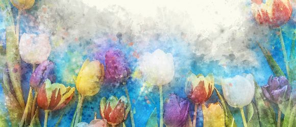 Vůně květiny