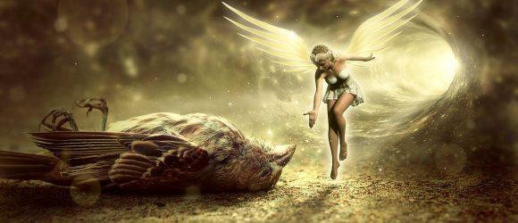 Mrtvý ptáček a anděl strážný