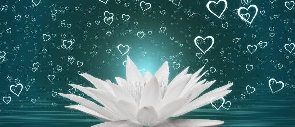 Svět potřebuje naši lásku